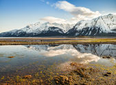 Chilkat Inlet Reflections — Stock Photo