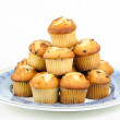 Muffins with chocolate chips — Stock Photo