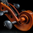 Violin pegbox and scroll detail - Stock Photo