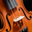 Violin front view cropped - Stock Photo