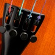 Violin tailpiece detail - Stock Photo