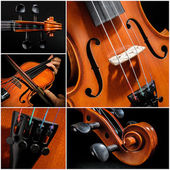 Violin Collage — Stock Photo