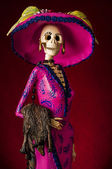 Day of the dead. Traditional mexican catrina — Foto Stock