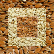 Sesame & linseed — Stock Photo