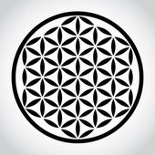 Flower of life — Stock Photo