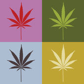 Four cannabis leafs — Stock Photo