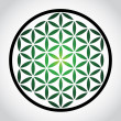 Flower of life symbol — Stock Photo
