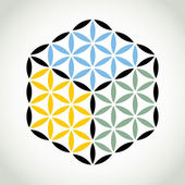 Flower of life symbol — Stock Vector