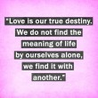Stock Photo: Inspirational quote words by Thomas Merton on pink background