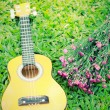 Ukulele guitar on green grass with flower — Stock Photo