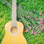 Ukulele guitar on green grass with flower — Stockfoto