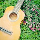 Ukulele guitar on green grass with flower — Stockfoto