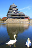Castle and two swans — Stock Photo