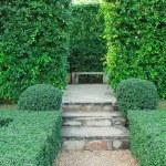 Steps pathway — Stock Photo