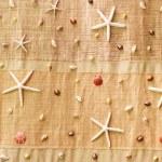 Sea shells on fabric — Stock Photo