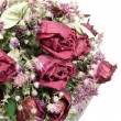 Stock Photo: Bouquet of dried roses