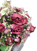 Bouquet of dried roses — Stock Photo