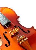Part of violin — Stock Photo