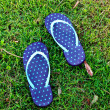 Stock Photo: Sandal on grass