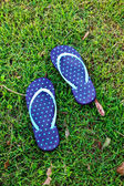 Sandal on grass — Stock Photo