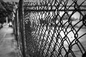 Wire fence — Foto Stock