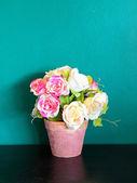 роза в горшке — Стоковое фото