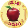 Shana tova - Stockvectorbeeld