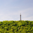 Petrin tower in Prague — Stock Photo