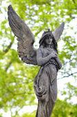 Rzeźby anioła na starej pradze cmentarz vysehrad — Zdjęcie stockowe