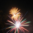 Fireworks in the night sky — Stock Photo #22524493