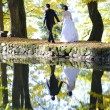 Wedding couple in park — Stock Photo #22529677