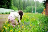 Little girl picking up summer flowers — Stock Photo