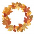 Wreath of autumn leaves of maple isolated on white — 图库矢量图片