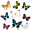 Various vector butterflies on white background — Stock Vector