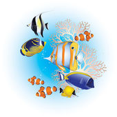 Colorful tropical fish in blue water — Stock Vector