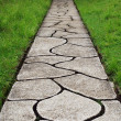 Stone path through a green grassy lawn — Stock Photo