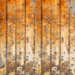 Old wood, grunge background — Stock Photo #24029219