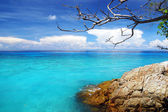 Beautiful blue sea ,blue sky from tachai island in Thailand — Stock Photo
