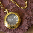Gold Pocket Watch — Stock Photo #13636964