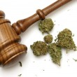 Law and Marijuana — Stock Photo #16975317
