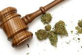 Wet en marihuana — Stockfoto
