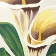 Calla Lilies Painting — Stock Photo #27054085