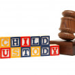 Child Custody — Stock Photo #30017077