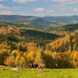 Autumn Countryside — Stock Photo