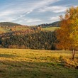 European Countryside - Stock Photo