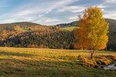 European Countryside — Stock Photo