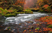 Autumn Creek — Stock Photo