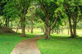Parco e percorso — Foto Stock