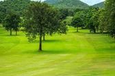 Golfbanan fält — Stockfoto