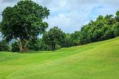 Campo da golf di pendenza collina — Foto Stock
